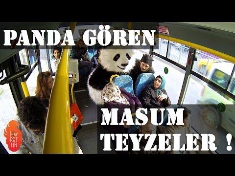 Panda gören masum teyzeler !