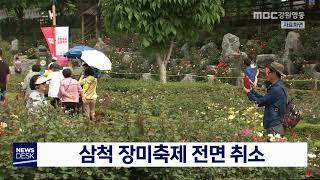 투/삼척 장미축제 취소