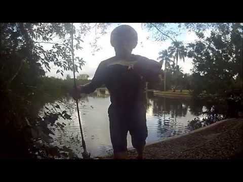 snook fishing with D.O.A shrimp [HD]