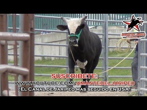 ***EN TIERRAS NUEVAS*** #RLT en OGDEN, UTAH (1080p HD)