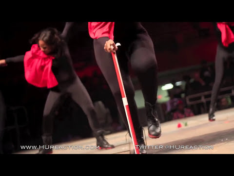 Delta Sigma Theta @ Howard University Homecoming Step Show 2011