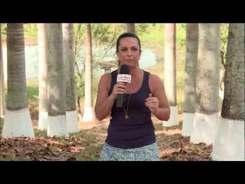 Fazenda Engenho do Cordeiro em Pernambuco