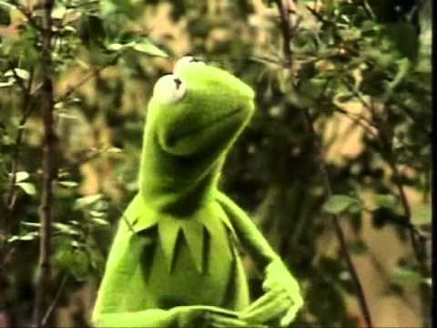 Muppets  Kermit  Its not easy being green original