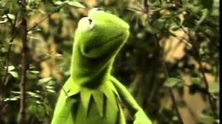 Watch Muppets Its Not Easy Being Green video