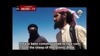 Download Lagu ISIS Shepherd by Yezidis International Organization Gratis STAFABAND