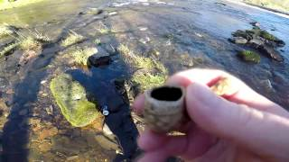Local river hunt in search of surface finds.
