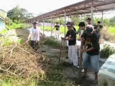 Tau gamma phi concepcion council Video