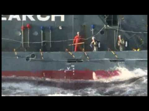 Sea Shepherd Proves Japanese Whalers Shoot Themselves in the Face with Pepper Spray