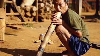 "Laos - the ""million elephants"" country"