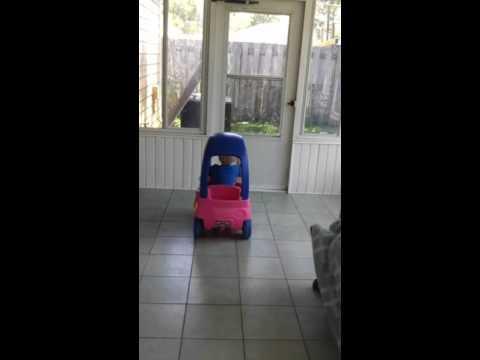 Baby drives and crashes car!!!!