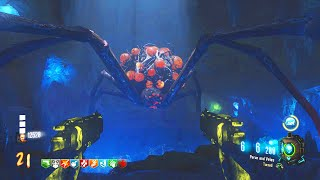 "BLACK OPS 3 ZOMBIES ""ZETSUBOU NO SHIMA"" SPIDER BOSS + FREE WIDOWS WINE (BO3 Zombies)"