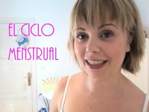 Como funcionan los Test de Ovulación, parte I: El ciclo menstrual