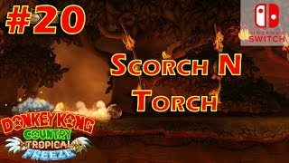 Donkey Kong Country Tropical Freeze Episode 20 Scorch N Torch