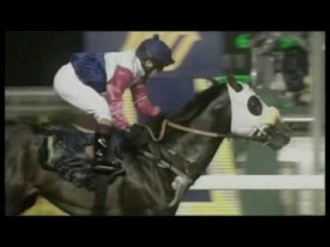 South African Horse Racing Documentary- Part 1