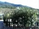Casa Rural En El Interior De Castellon
