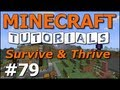 Youtube replay - Minecraft Tutorials - E79 Hopper Ba...