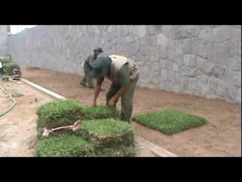 Instalación de Césped Grass americano www.viverochaclacayo.com.pe