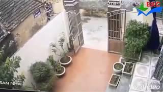 Hài hước cảnh tên trộm lẻn vào nhà mà không biết chủ đang đứng ngoài cổng
