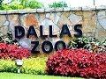 Dallas Zoo Visit -  2011  [HD]