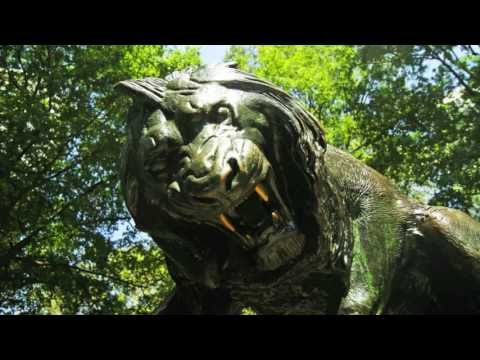 Museum Without Walls™: AUDIO - Lion Crushing a Serpent by Antoine Louis Barye