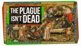Could the Plague Rise Again?