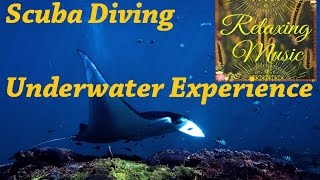Relaxing Music II Feel The Underwater Sounds Experiance 1 Hour Full Relaxing Music