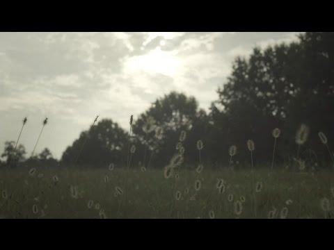 The Dear Hunter Light music videos 2016