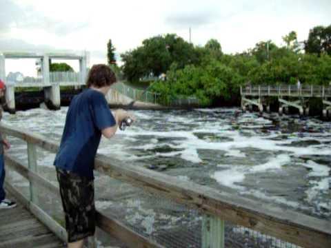 Spillway Fish pa Spillway Fishing