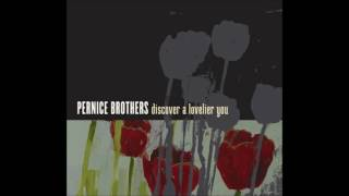 Watch Pernice Brothers There Goes The Sun video