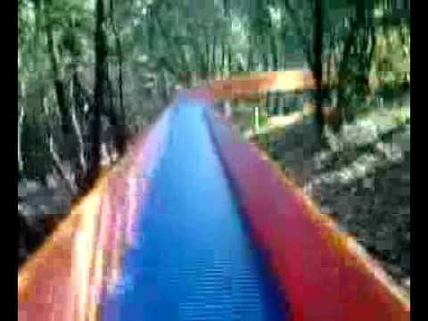 東山動植物園 ローラー滑り台「樹海ダー」