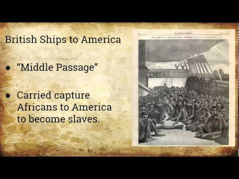Unit 2: Lesson 7 The Triangular Trade