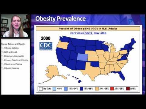 11.1 Energy Balance: Obesity Statistics
