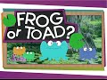 Download Frog or Toad? in Mp3, Mp4 and 3GP