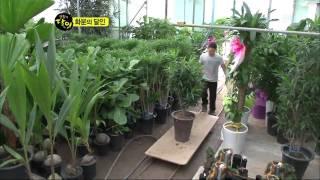 [sbs 생활의 달인] 305회 2011년9월19일 월요일_08