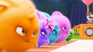 Sunny Bunnies - OLYMPICS COMPILATION | Cartoons For Children | Funny Cartoons For Children