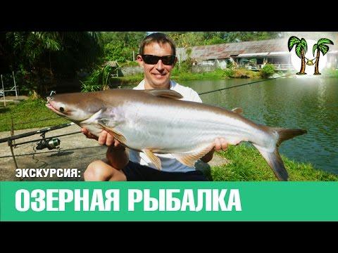 озерная рыбалка на пхукете видео