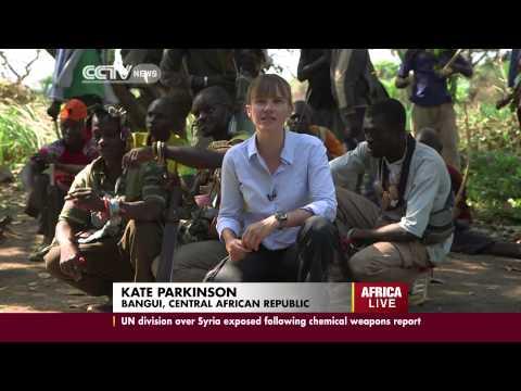 Central African Republic: Michel Djotodia calls for disarmament of rival militia groups