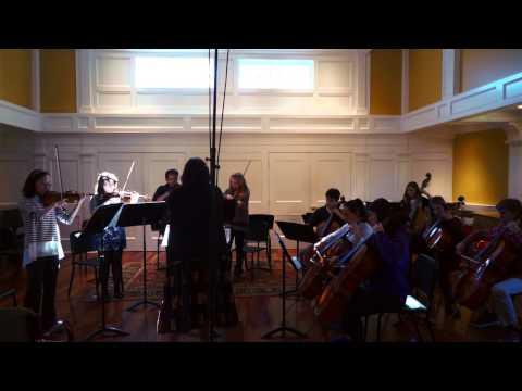 The Rivers School Chamber Orchestra - Dvorak: Waltz, Op. 54