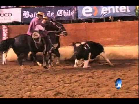 Rodeo Final del Champion de Chile 2010