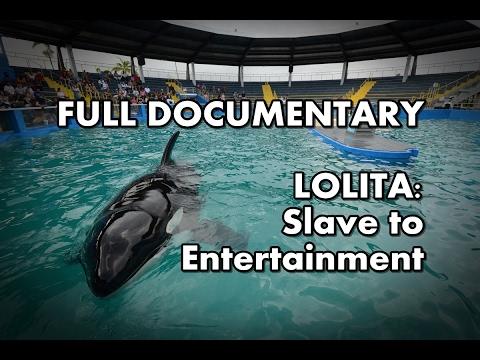 Lolita: Slave to Entertainment - 2003 | Full documentary