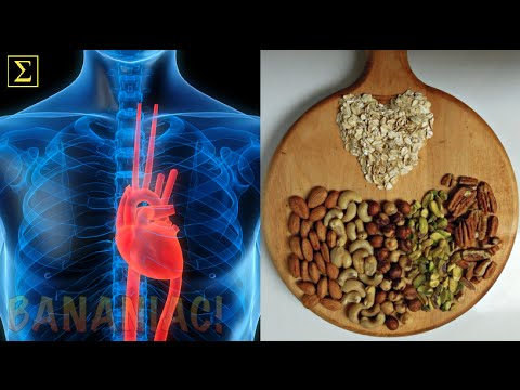 Nuts, Seeds, & Avocados Healthy for CVD? | Caldwell Esselstyn, M.D.