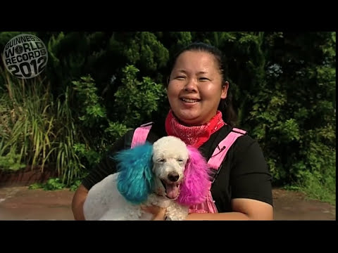 Meet The Record Breakers - Uchida Geinousha -- handler of the most dogs skipping on a rope