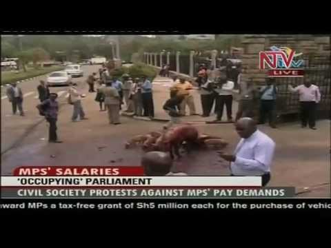 Kenya Protestors Drag Pigs To Parliament Demo