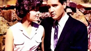 Watch Elvis Presley Suspicion video