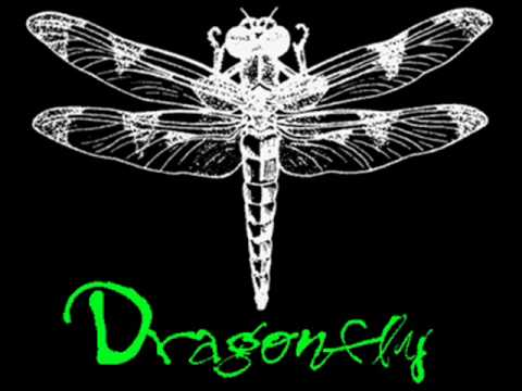 Shaman's Harvest- Dragonfly NOW WITH LYRICS!!-ish