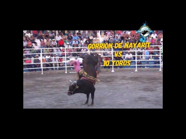 El Gorrión de Nayarit vs 10 toros de 10 ganaderias en la Candelaria de Tecomán