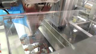 APAI LLC Econopouch Packaging System with Linear Scale