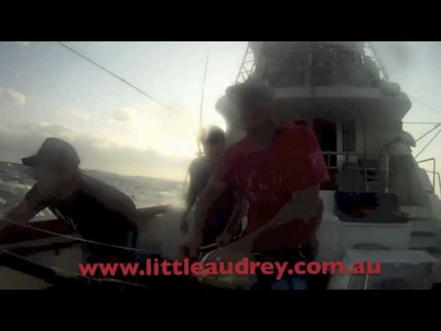 600lbs of Black Marlin Jumps on board Little Audrey off Cairns 2012 - Official Video.mp4