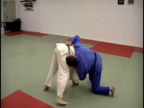 Judo & jiu-jitsu Take down by David Loshelder Image 1
