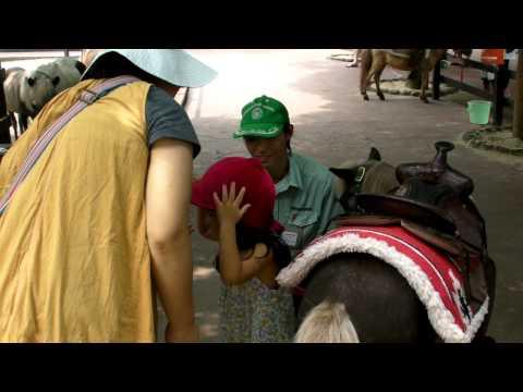 アフリカンサファリで乗馬
